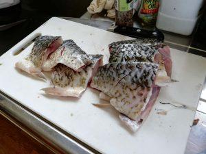 捕れた魚をさばきます